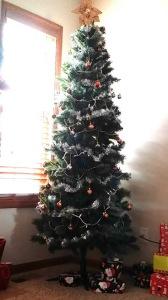 Christmas 2014 6