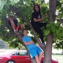 3 kids in obey tree